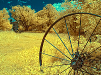 Rusted Wheel in Color Infrared
