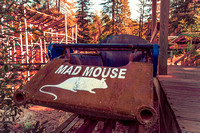 Mad Mouse Coaster Car